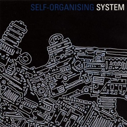 SYSTEM Self Organising System CD 2008