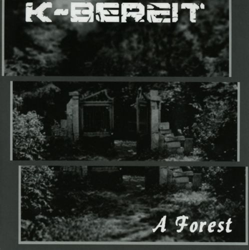 "Only one free item can be redeemed per order! K-BEREIT A Forest 7"" RED VINYL 2014 LTD.300"