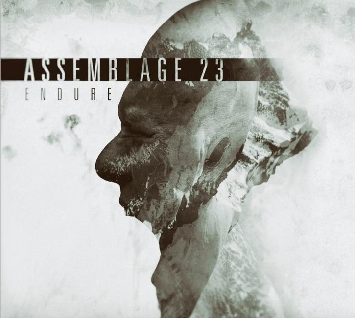 ASSEMBLAGE 23 Endure CD 2016