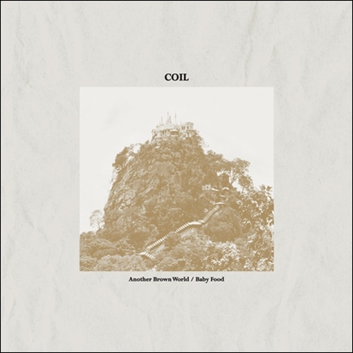 COIL Another Brown World / Baby Food LP VINYL 2017