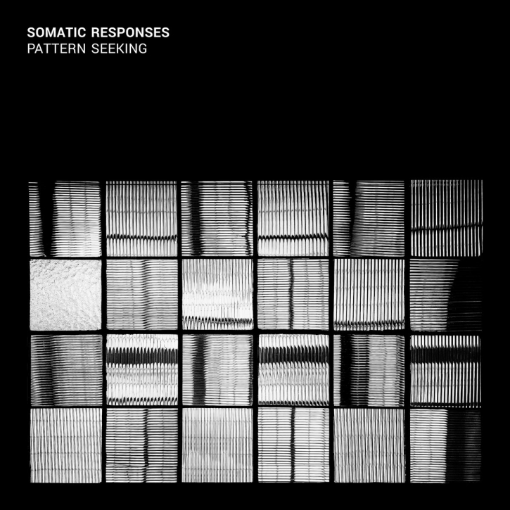 SOMATIC RESPONSES Pattern Seeking CD 2017