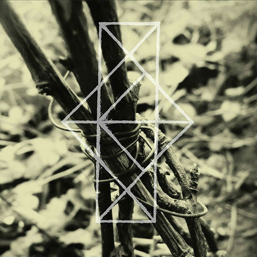 COMMON EIDER, KING EIDER Shrines for the Unwanted, Respite for the Cast aside CD 2017