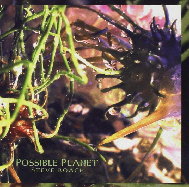 STEVE ROACH Possible Planet CD 2005