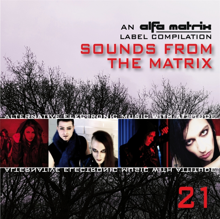Only one free item can be redeemed per order! Sounds From The Matrix 21 CD