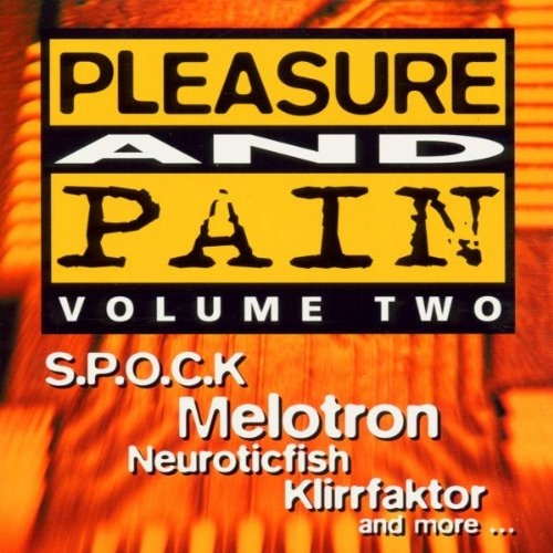 PLEASURE AND PAIN VOL. TWO CD 2000 (Melotron FUNKER VOGT In Strict Confidence)