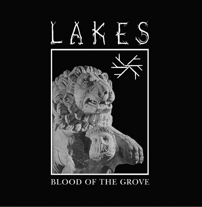 LAKES Blood of the Grove LIMITED LP VINYL 2013