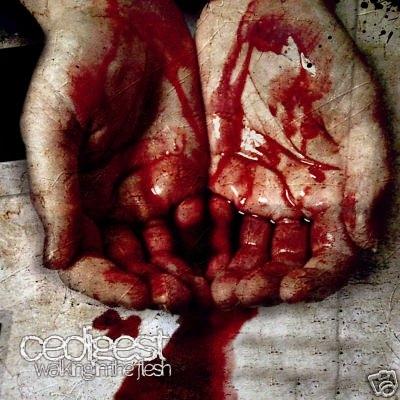 CeDigest Walking In The Flesh CD 2010 NoiTekk