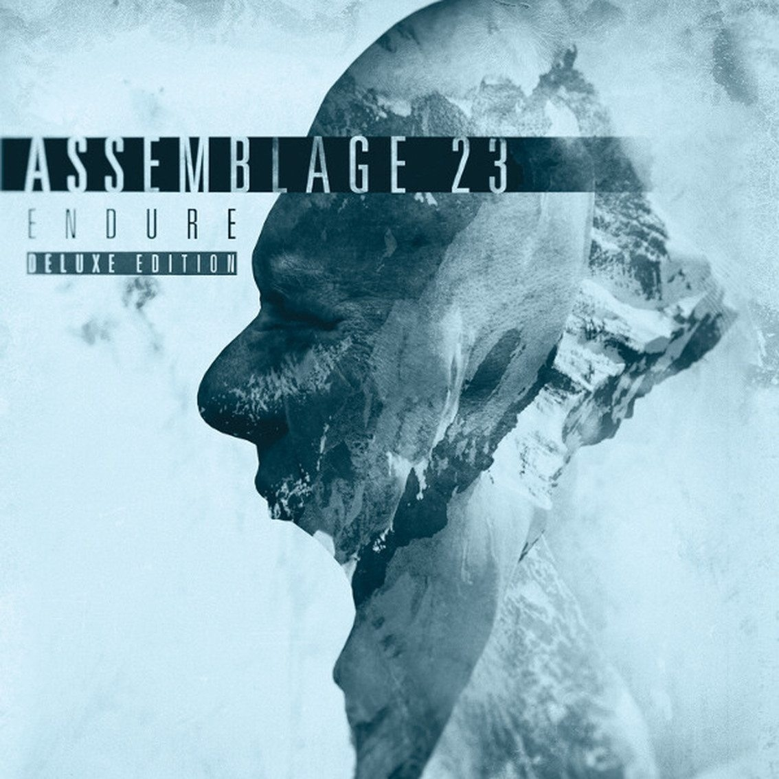 ASSEMBLAGE 23 Endure LIMITED 2CD DELUXE EDITION 2016