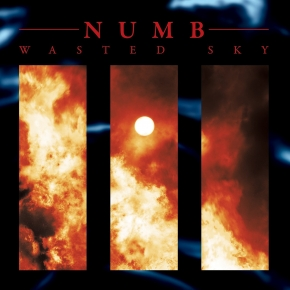 NUMB Wasted Sky LP VINYL 2017 LTD.500