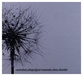 CONTROLLED COLLAPSE post-traumatic.stress.disorder CD Digipack 2017