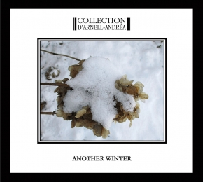 COLLECTION D'ARNELL-ANDREA Another Winter CD Digipack 2019 (VÖ 22.02)